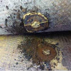 Corrosion around screw under vinyl floor